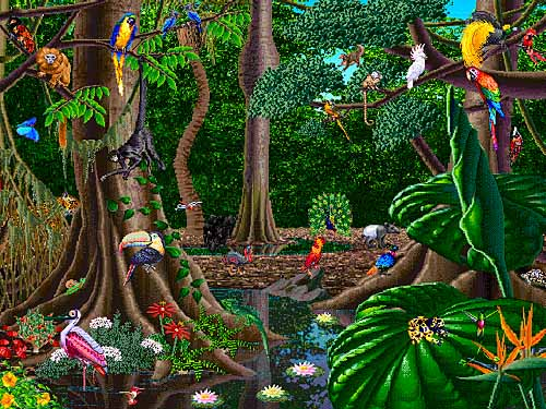 rainforest animals | Carrdyke Federation Blog